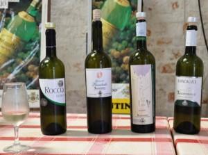 Cantina-del-Locorotondo-white-wine-tasting-300x223
